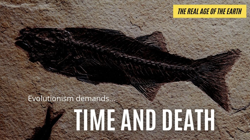 Evolution requires time and death (and lots of both!).