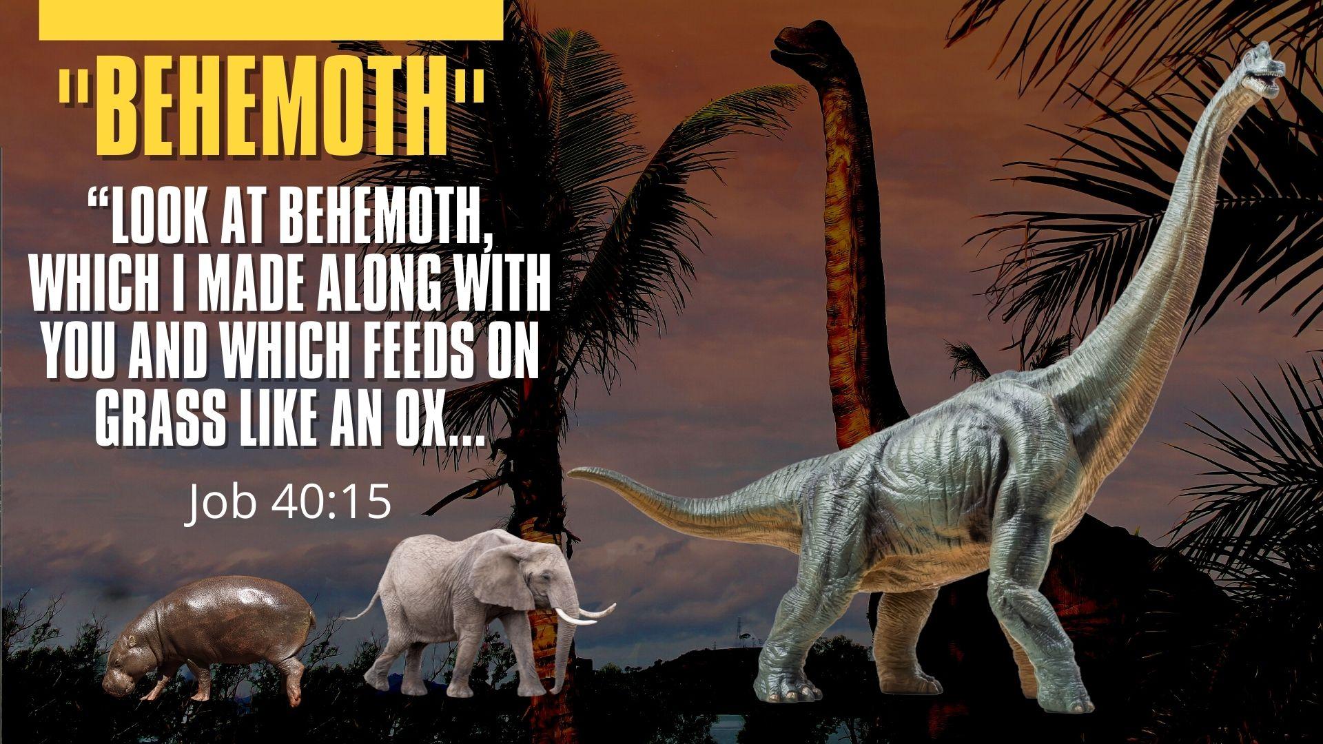 Behemoth.Job 40.15