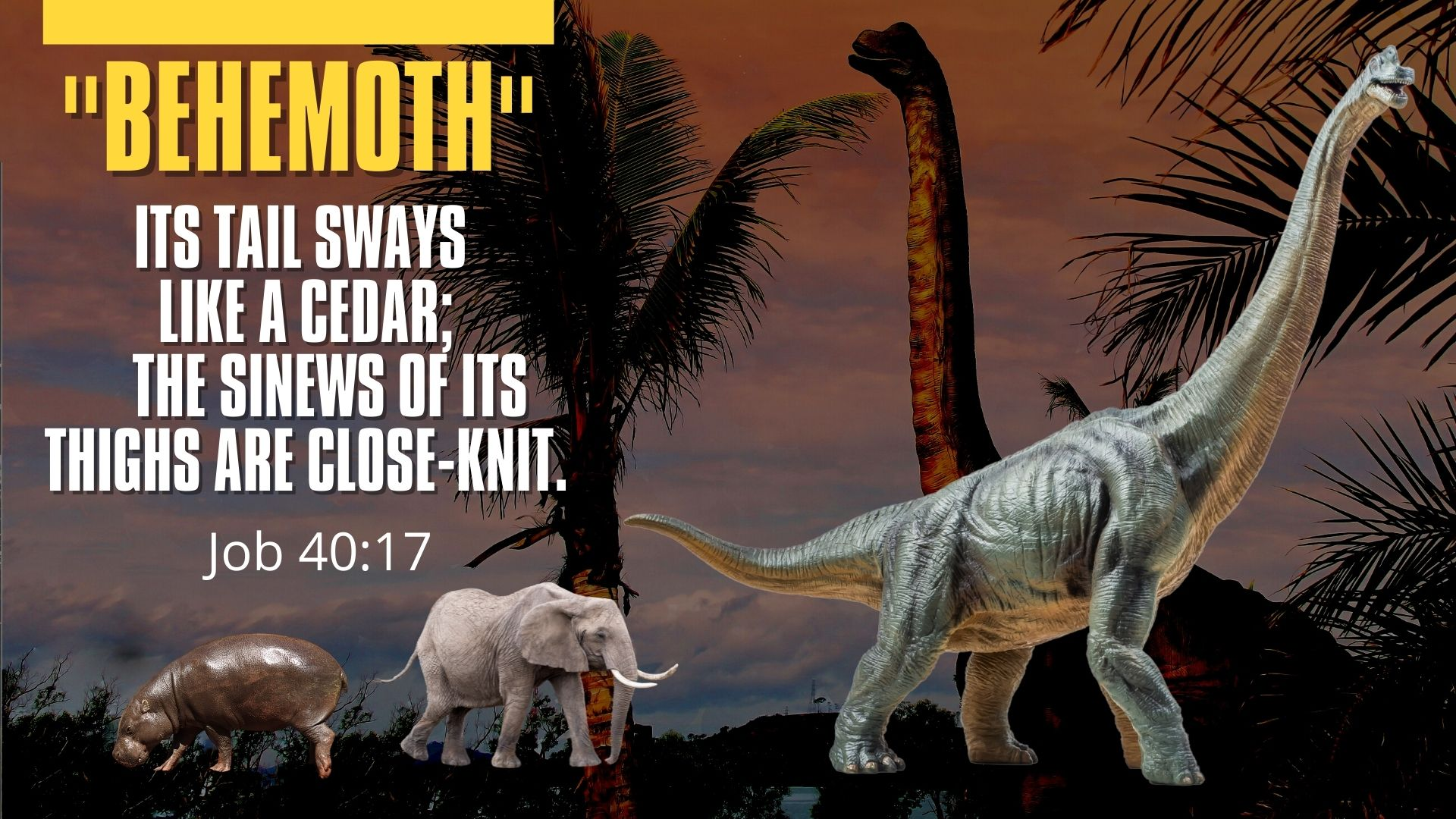 Behemoth.Job 40.17