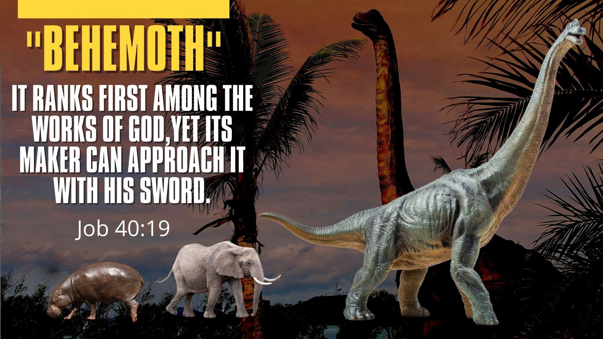 Behemoth.Job 40.19