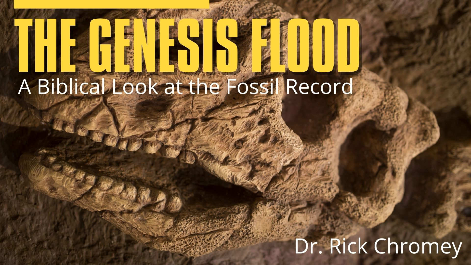 TITLE.Genesis Flood.A Biblical Look at the Fossil Record